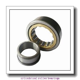 25 mm x 62 mm x 24 mm  ISB NUP 2305 cylindrical roller bearings