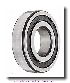 90 mm x 160 mm x 40 mm  SKF C2218KV cylindrical roller bearings