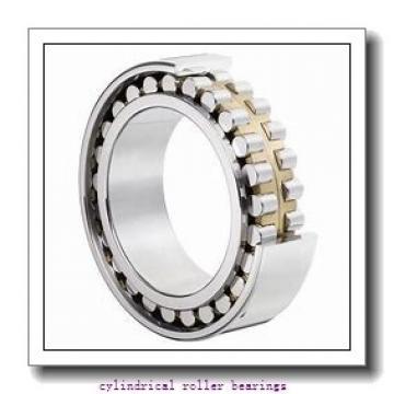 20 mm x 52 mm x 15 mm  NACHI NJ304EG cylindrical roller bearings