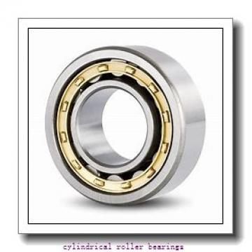 120 mm x 215 mm x 40 mm  NKE NJ224-E-M6+HJ224-E cylindrical roller bearings