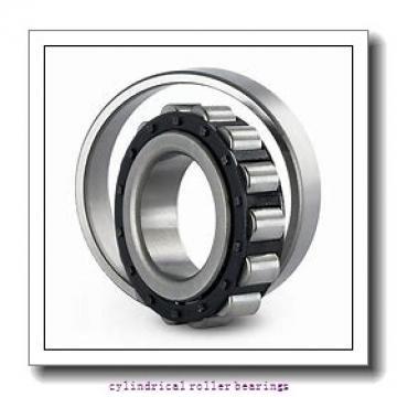 25 mm x 52 mm x 18 mm  NKE NJ2205-E-MPA cylindrical roller bearings